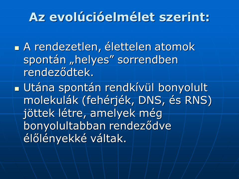 Az evolúcióelmélet szerint: