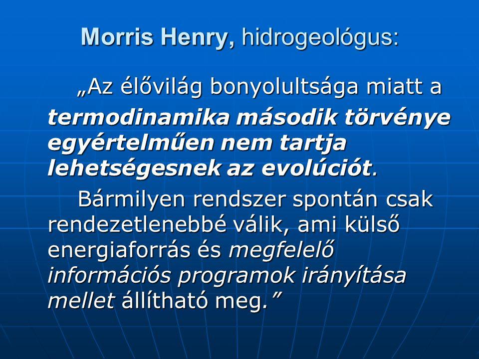 Morris Henry, hidrogeológus: