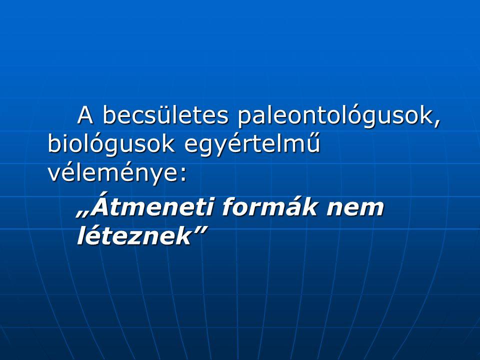 A becsületes paleontológusok, biológusok egyértelmű véleménye:
