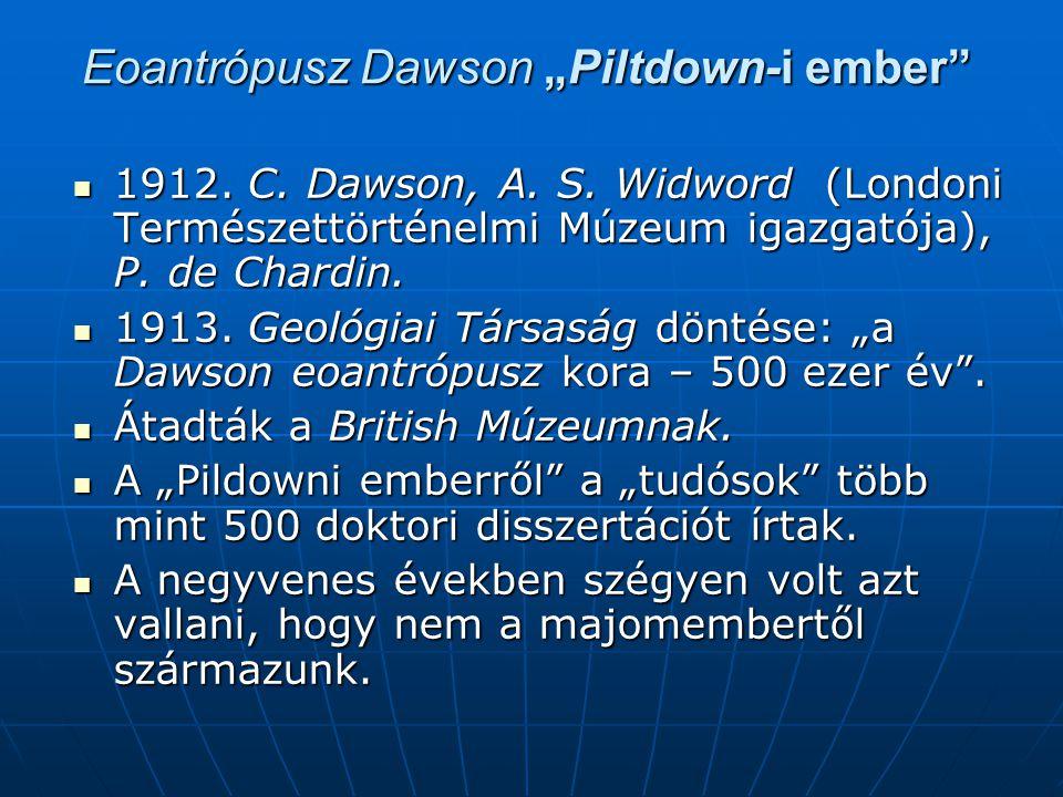 "Eoantrópusz Dawson ""Piltdown-i ember"
