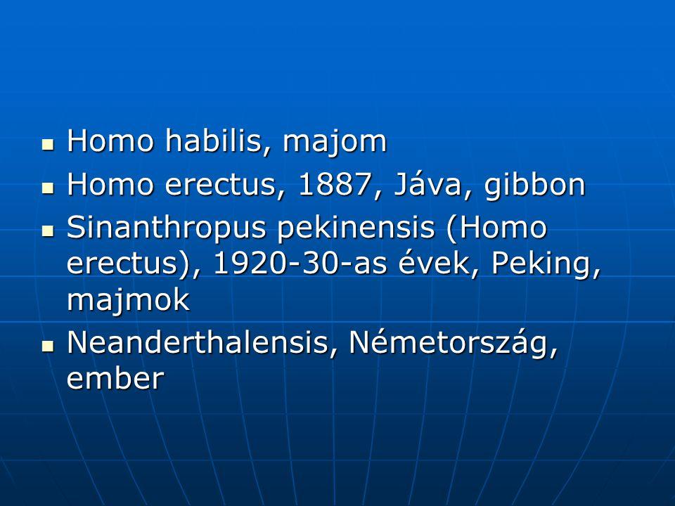 Homo habilis, majom Homo erectus, 1887, Jáva, gibbon. Sinanthropus pekinensis (Homo erectus), 1920-30-as évek, Peking, majmok.