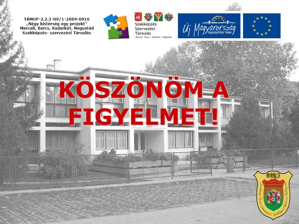 KÖSZÖNÖM A FIGYELMET! TÁMOP-2.2.3-09/1-2009-0016