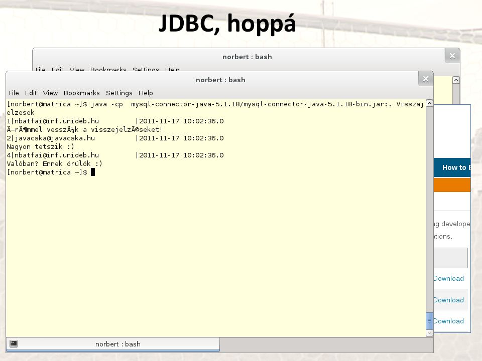 JDBC, hoppá http://www.mysql.com/products/connector/