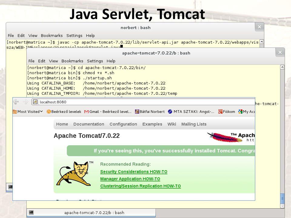 Java Servlet, Tomcat
