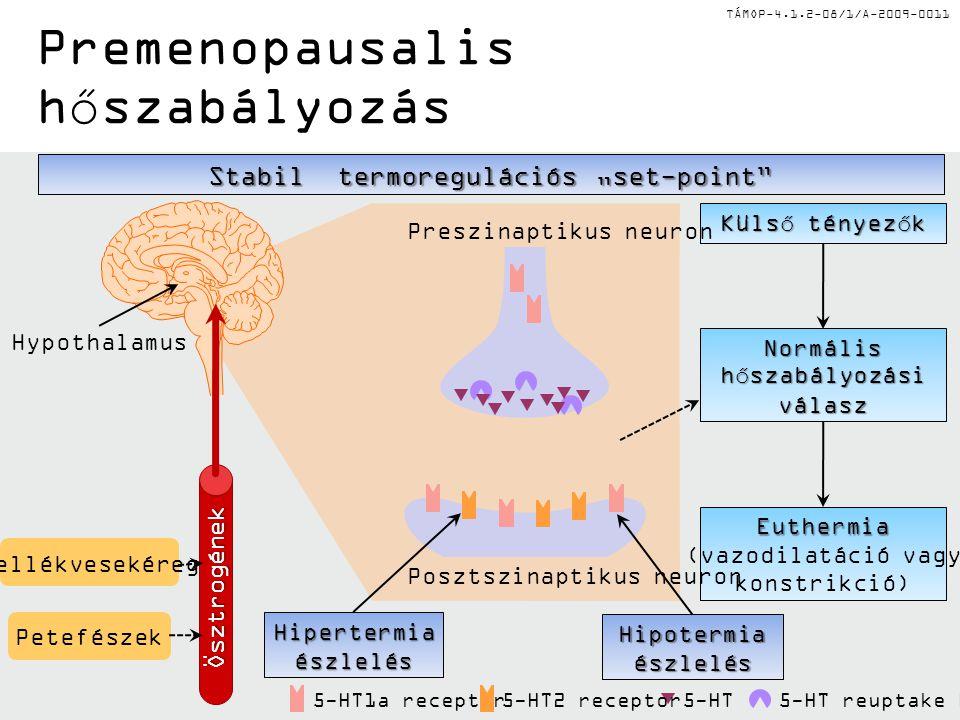 Premenopausalis hőszabályozás