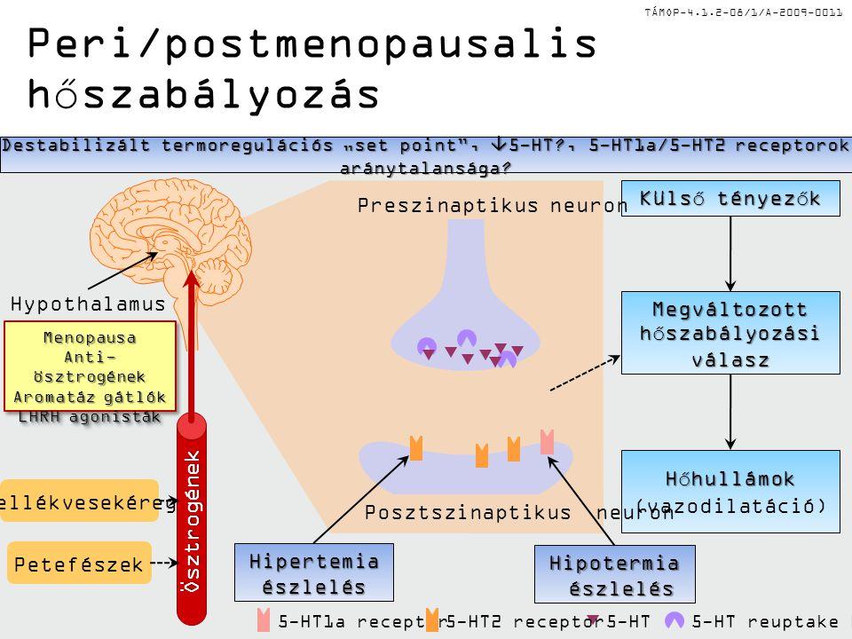 Peri/postmenopausalis hőszabályozás