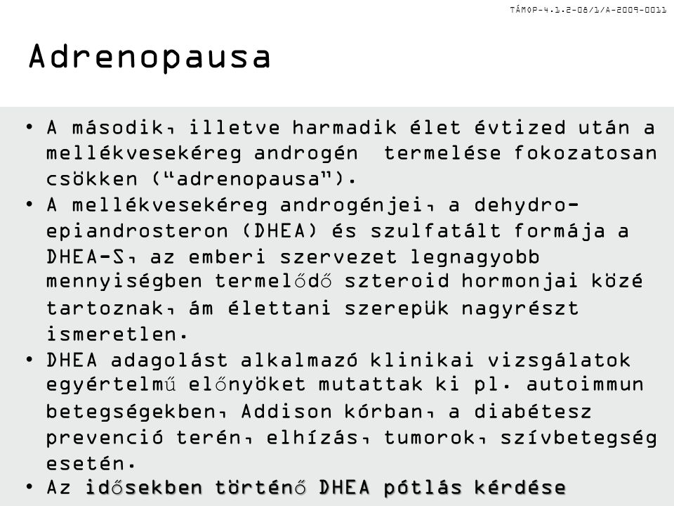 Adrenopausa A második, illetve harmadik élet évtized után a mellékvesekéreg androgén termelése fokozatosan csökken ( adrenopausa ).