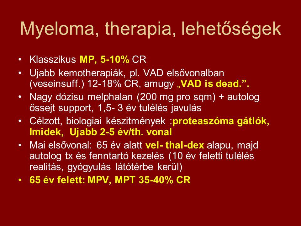 Myeloma, therapia, lehetőségek
