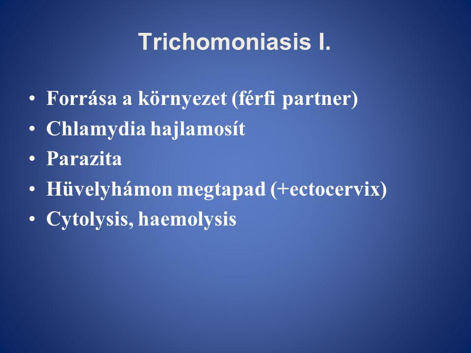 Trichomoniasis I. Forrása a környezet (férfi partner)