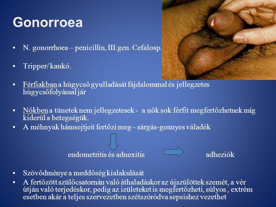 Gonorroea N. gonorrhoea – penicillin, III.gen. Cefalosp.