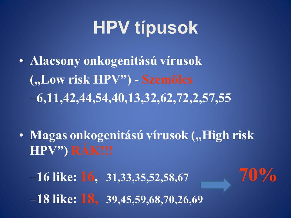 """HPV típusok Alacsony onkogenitású vírusok (""""Low risk HPV ) - Szemölcs"""