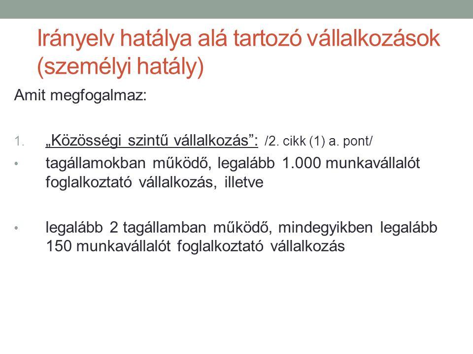 Irányelv hatálya alá tartozó vállalkozások (személyi hatály)