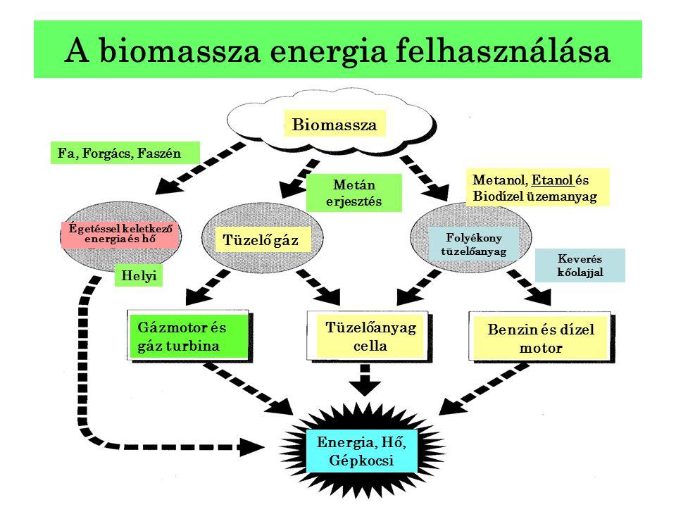 A biomassza energia felhasználása