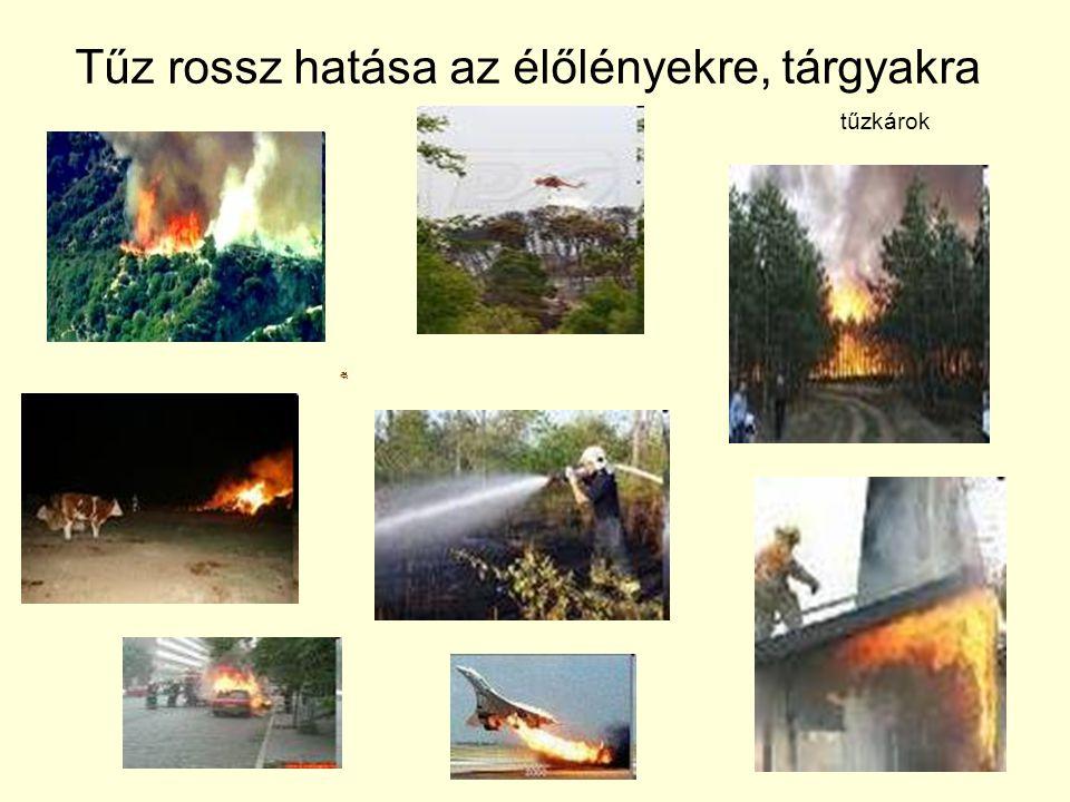 Tűz rossz hatása az élőlényekre, tárgyakra