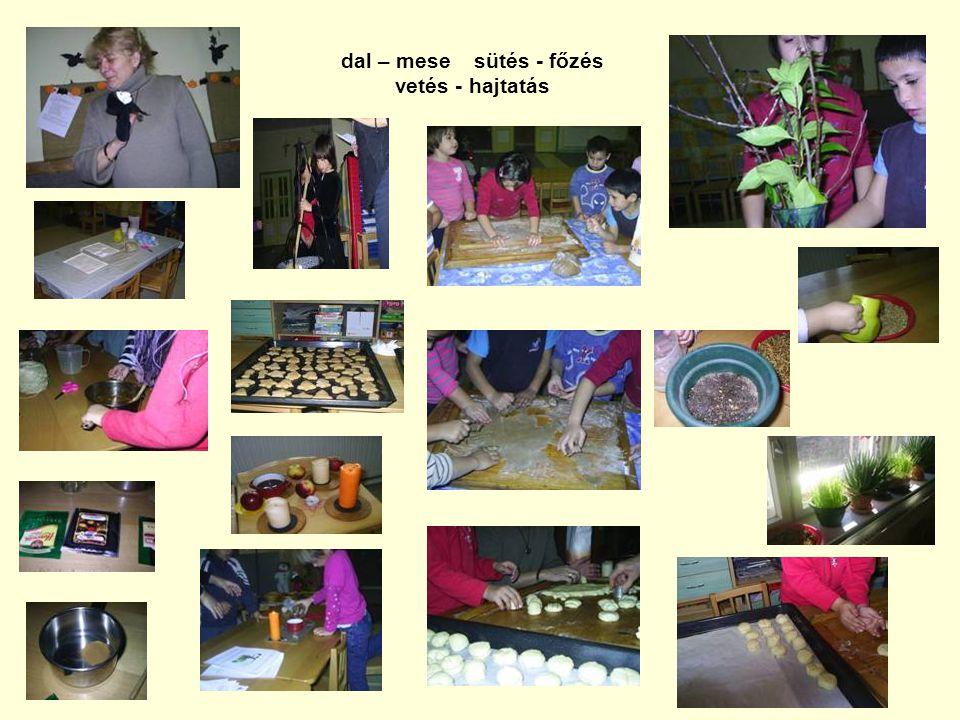 dal – mese sütés - főzés vetés - hajtatás