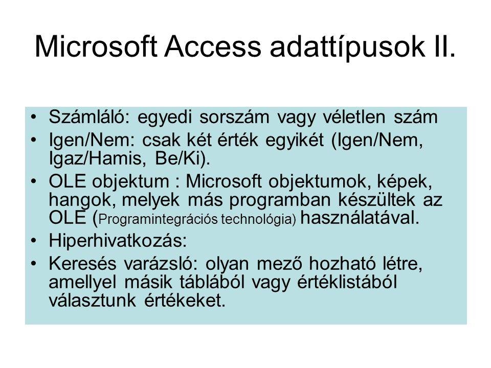 Microsoft Access adattípusok II.