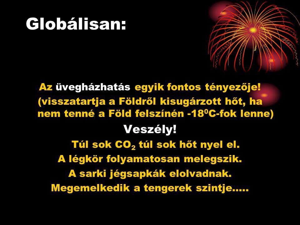 Globálisan: Veszély! Az üvegházhatás egyik fontos tényezője!