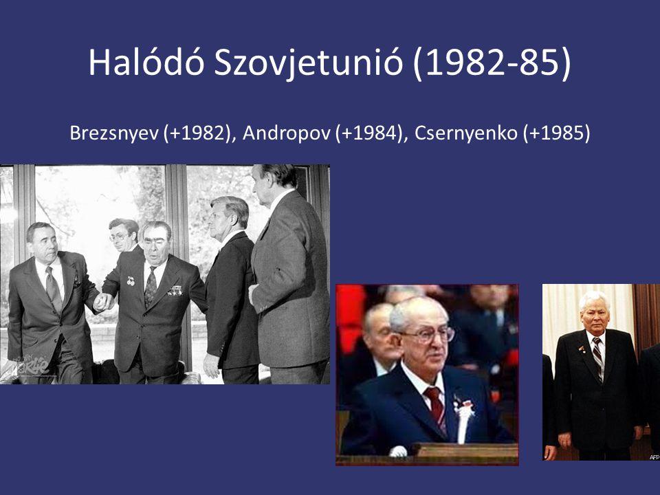 Halódó Szovjetunió (1982-85)