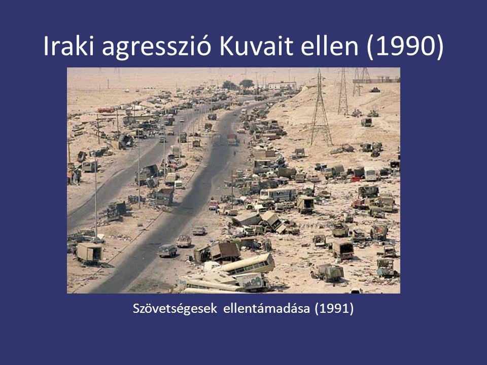 Iraki agresszió Kuvait ellen (1990)