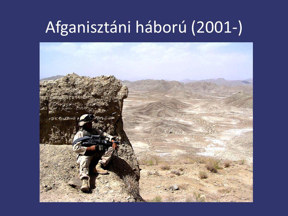 Afganisztáni háború (2001-)