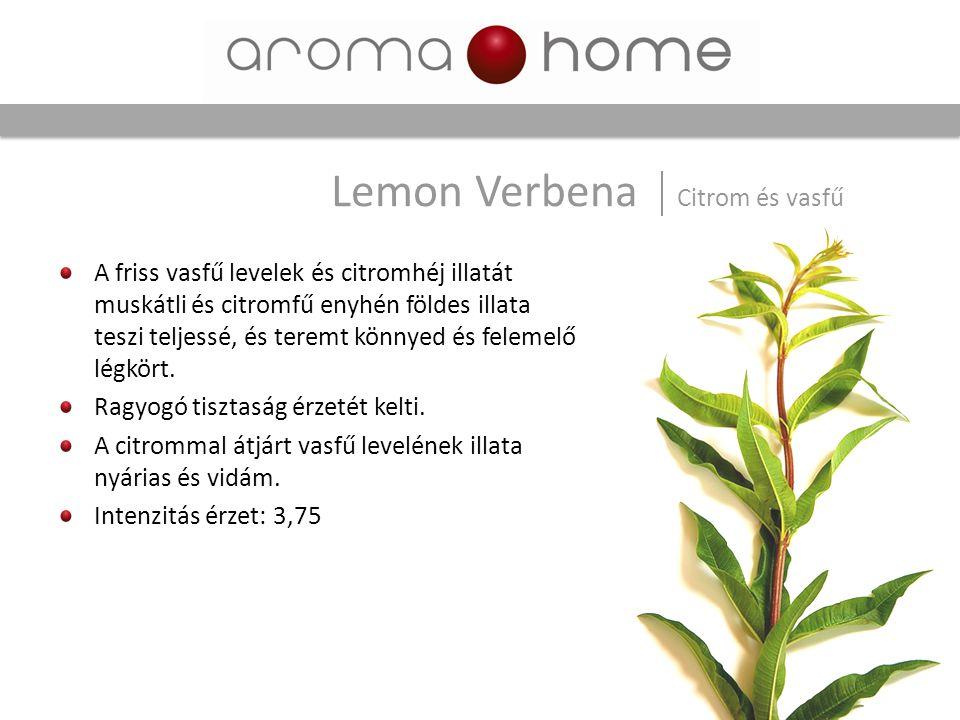 Lemon Verbena Citrom és vasfű