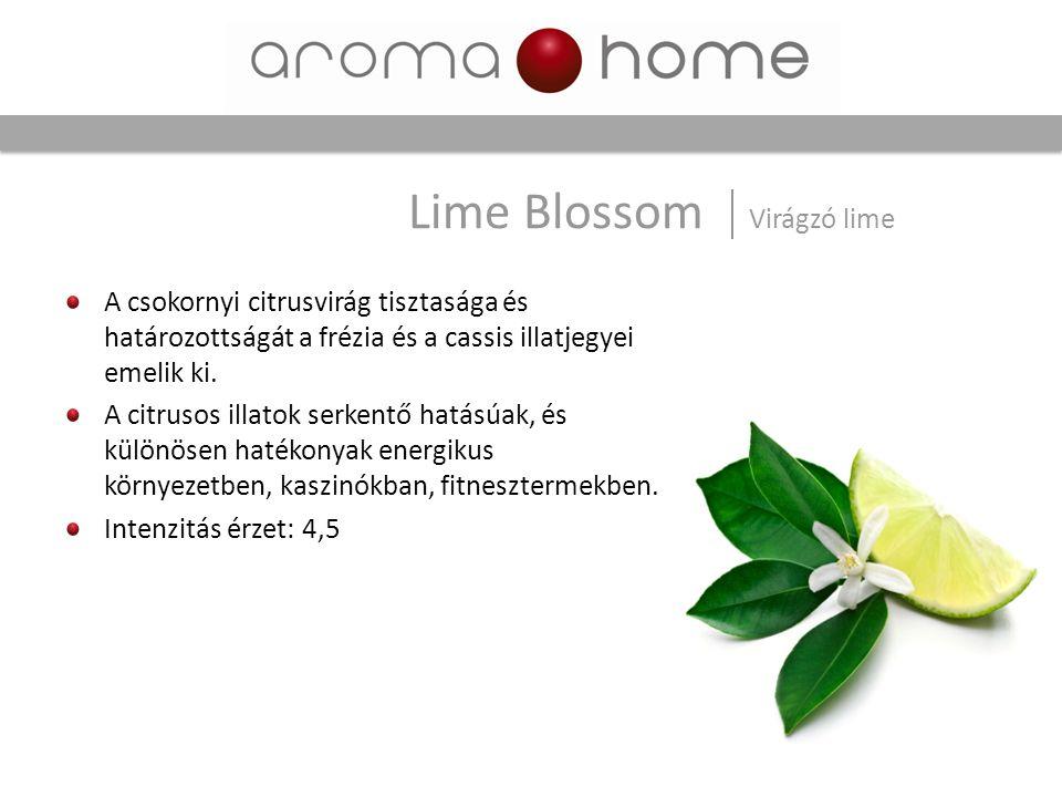Lime Blossom Virágzó lime