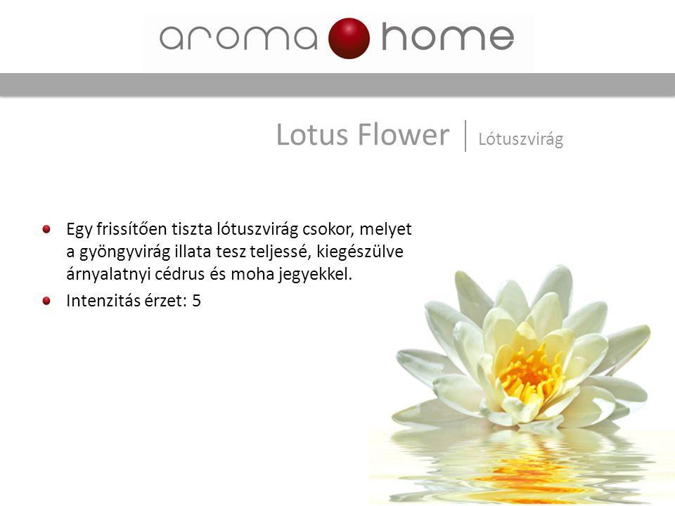 Lotus Flower Lótuszvirág