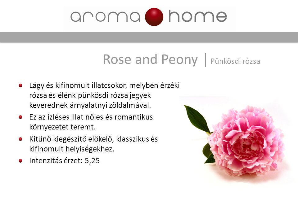 Rose and Peony Pünkösdi rózsa