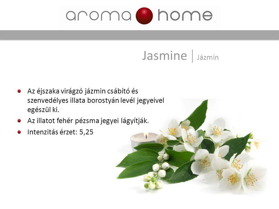 Jasmine Jázmin Az éjszaka virágzó jázmin csábító és szenvedélyes illata borostyán levél jegyeivel egészül ki.