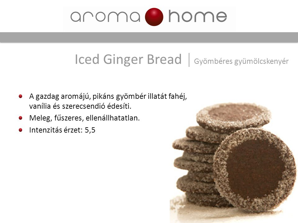 Iced Ginger Bread Gyömbéres gyümölcskenyér