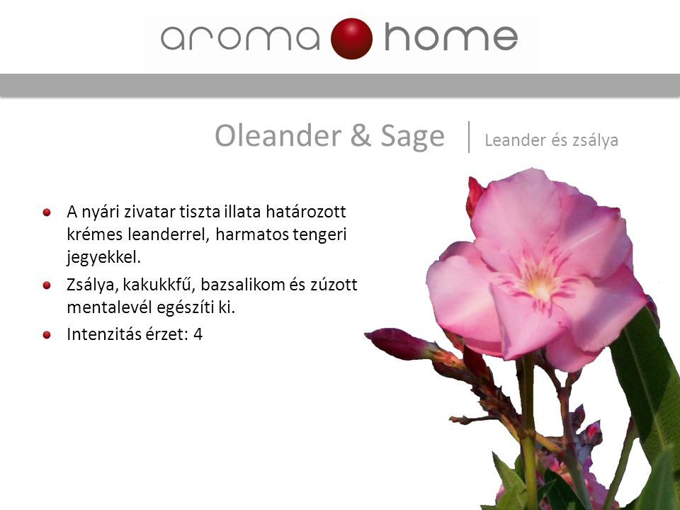 Oleander & Sage Leander és zsálya