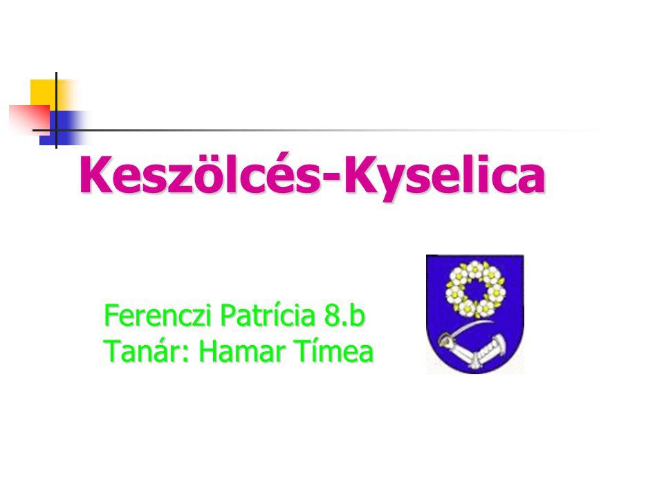 Ferenczi Patrícia 8.b Tanár: Hamar Tímea