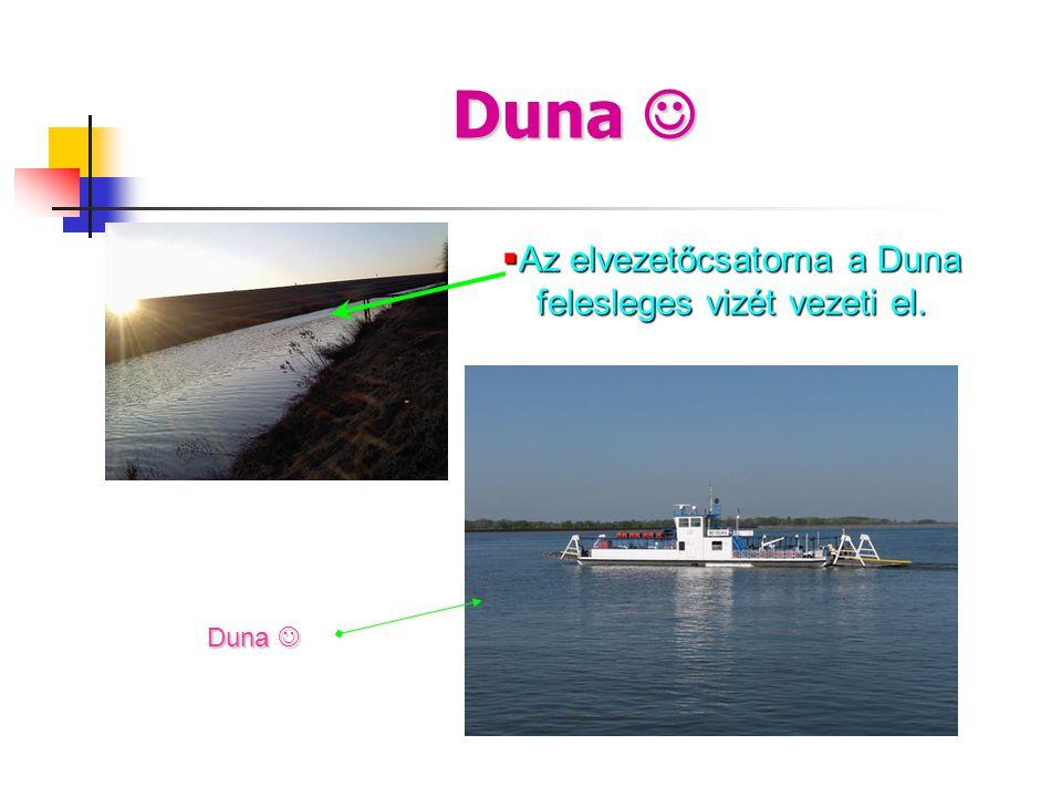 Az elvezetőcsatorna a Duna felesleges vizét vezeti el.