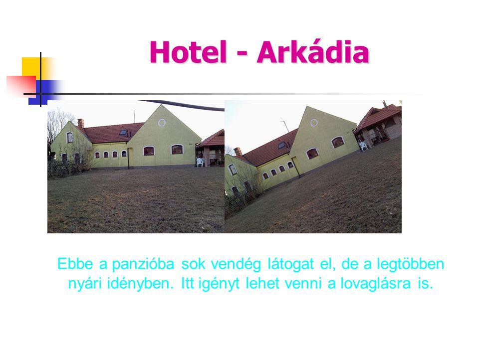 Hotel - Arkádia dwd. Ebbe a panzióba sok vendég látogat el, de a legtöbben nyári idényben.