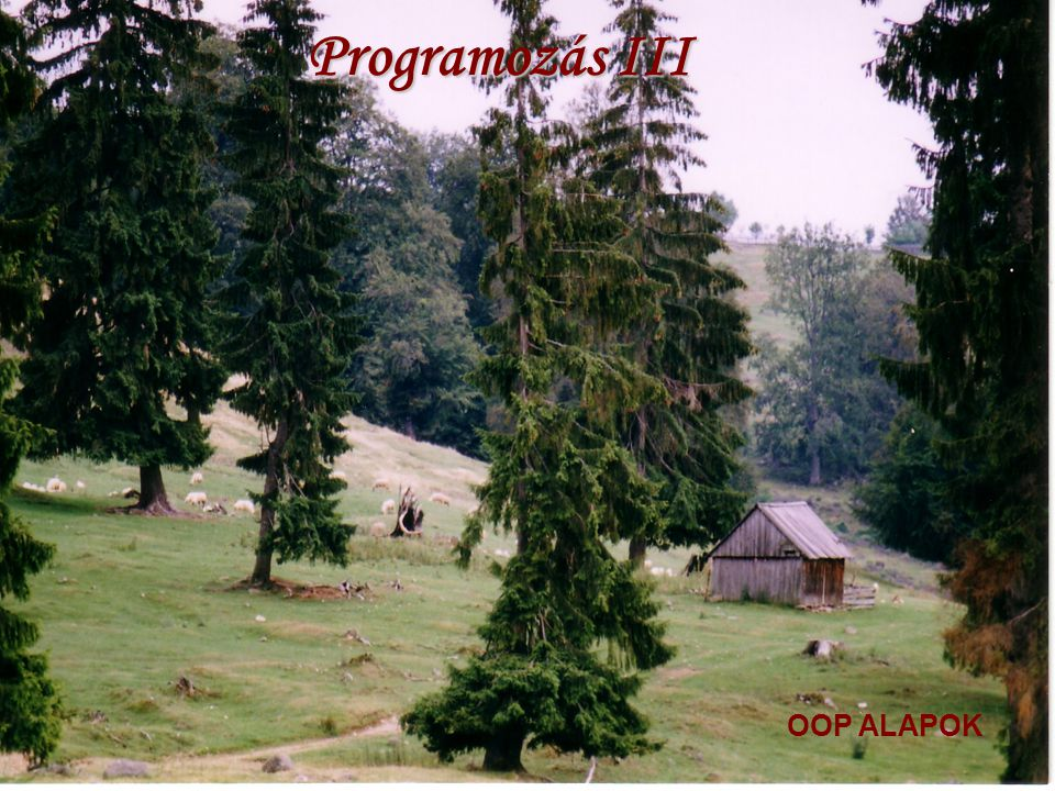 Programozás III OOP ALAPOK