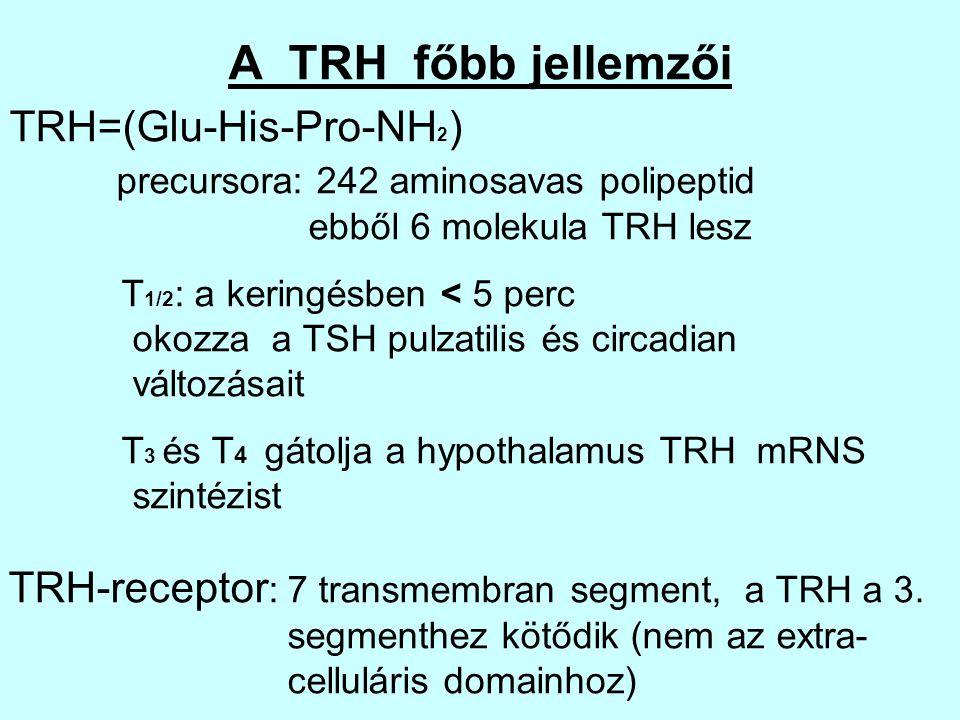 A TRH főbb jellemzői TRH=(Glu-His-Pro-NH2)