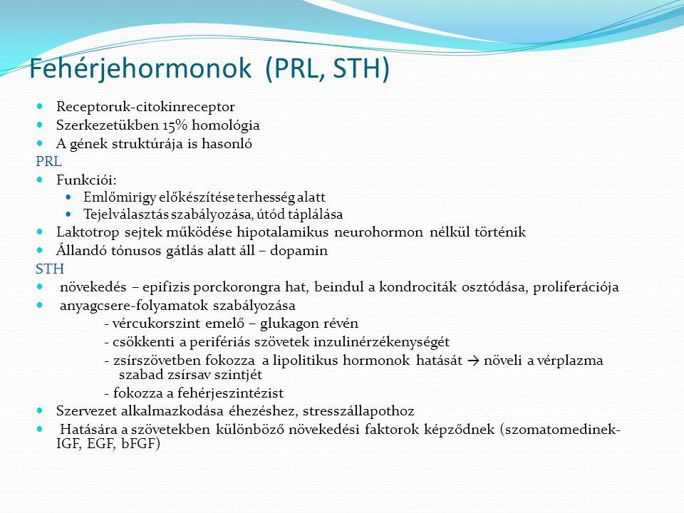 Fehérjehormonok (PRL, STH)