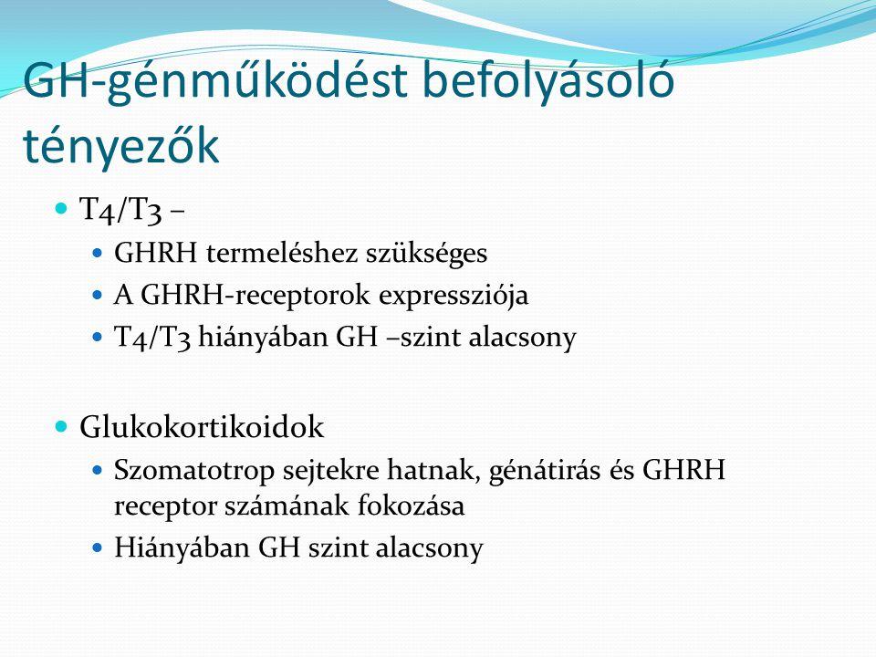 GH-génműködést befolyásoló tényezők