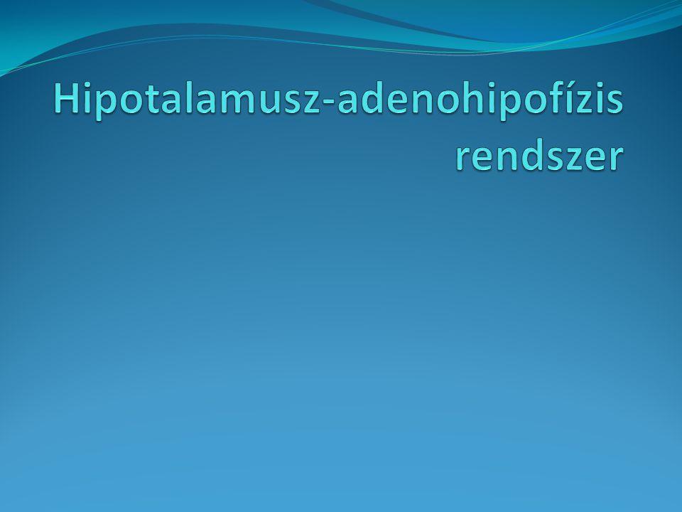 Hipotalamusz-adenohipofízis rendszer