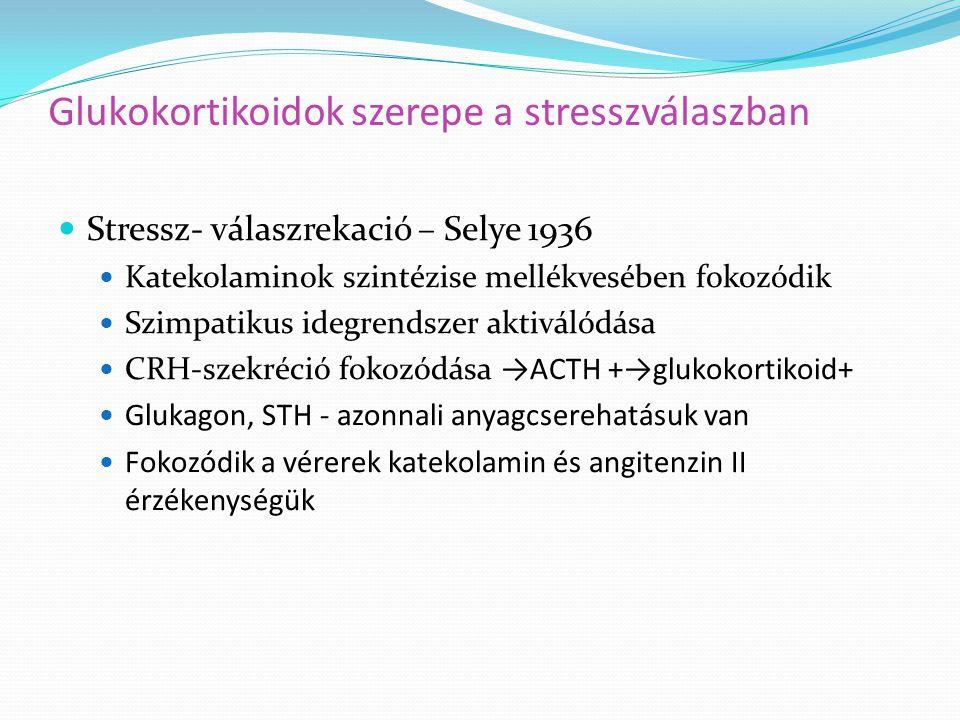 Glukokortikoidok szerepe a stresszválaszban