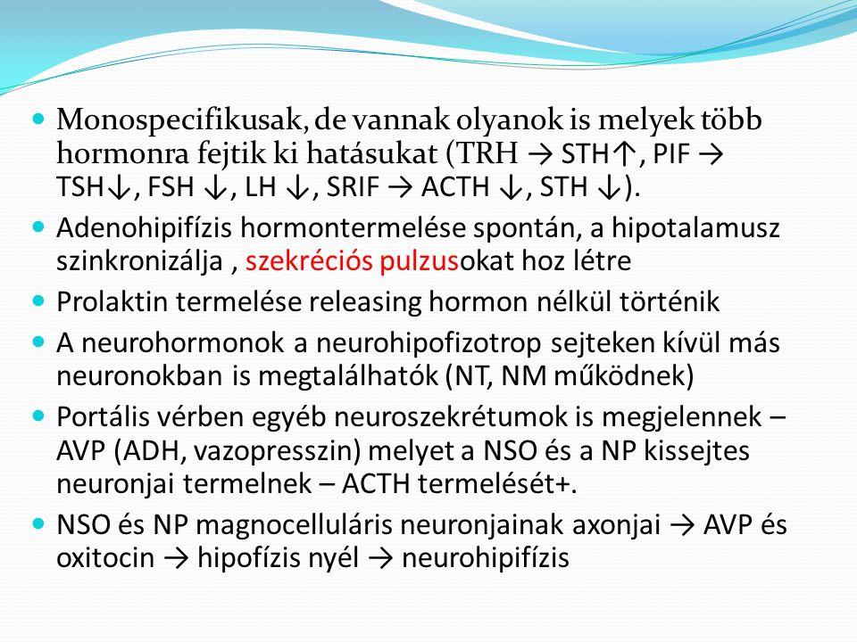Monospecifikusak, de vannak olyanok is melyek több hormonra fejtik ki hatásukat (TRH → STH↑, PIF → TSH↓, FSH ↓, LH ↓, SRIF → ACTH ↓, STH ↓).
