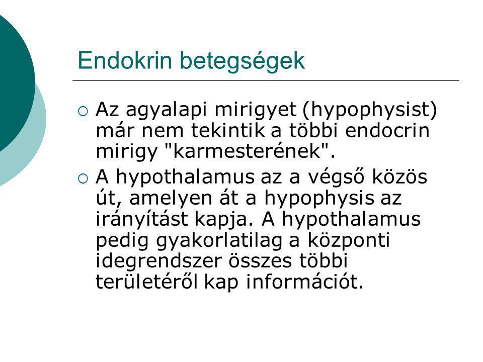 Endokrin betegségek Az agyalapi mirigyet (hypophysist) már nem tekintik a többi endocrin mirigy karmesterének .