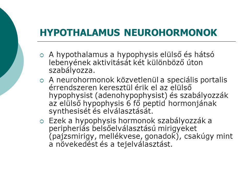 HYPOTHALAMUS NEUROHORMONOK