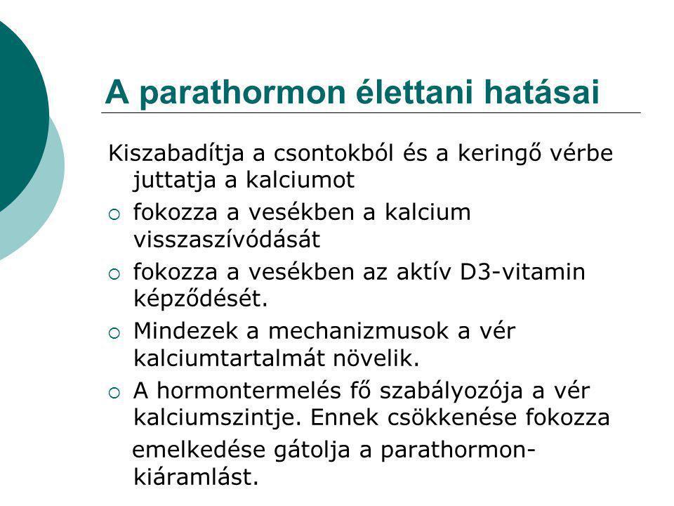 A parathormon élettani hatásai