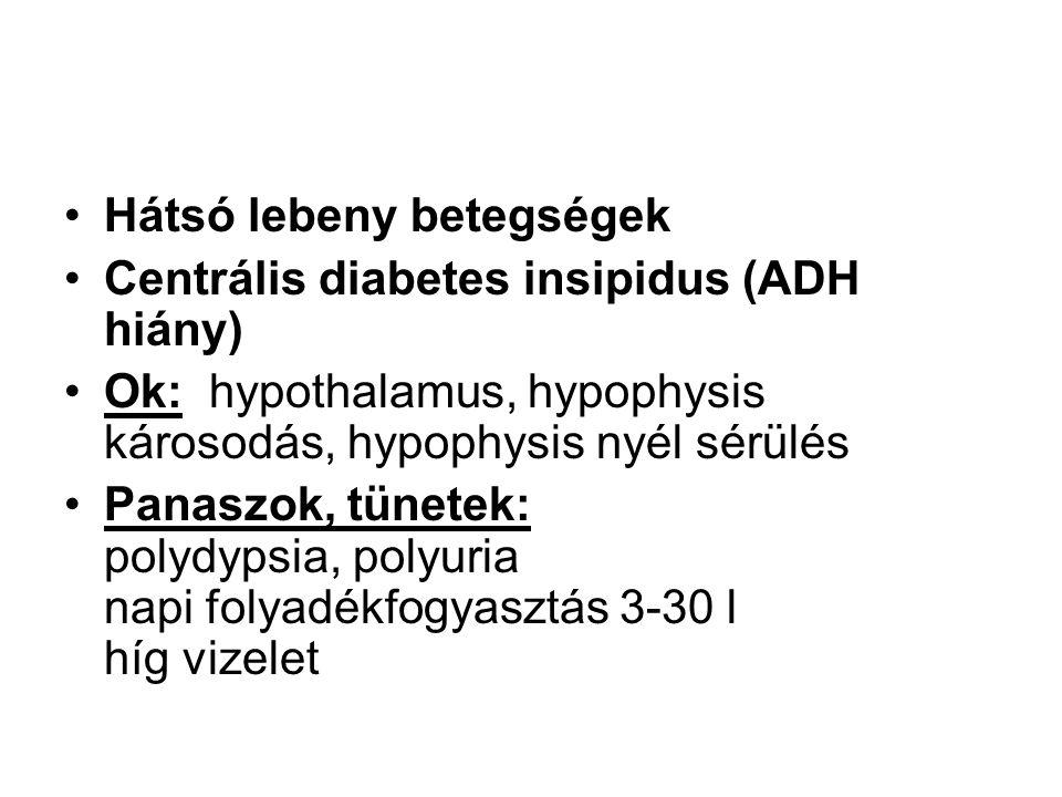 Hátsó lebeny betegségek