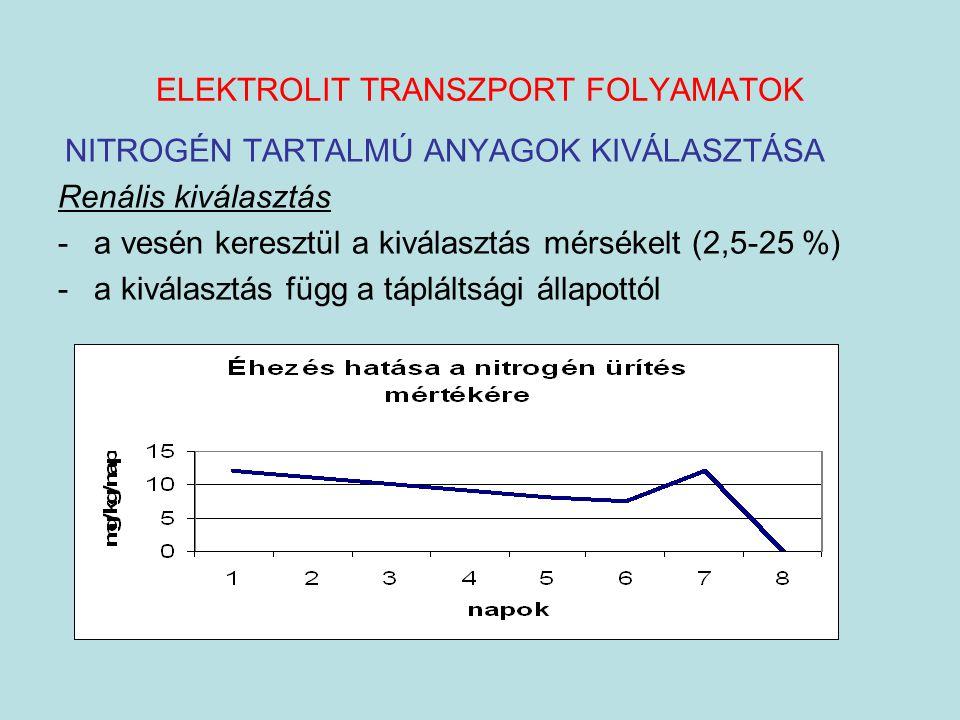 ELEKTROLIT TRANSZPORT FOLYAMATOK