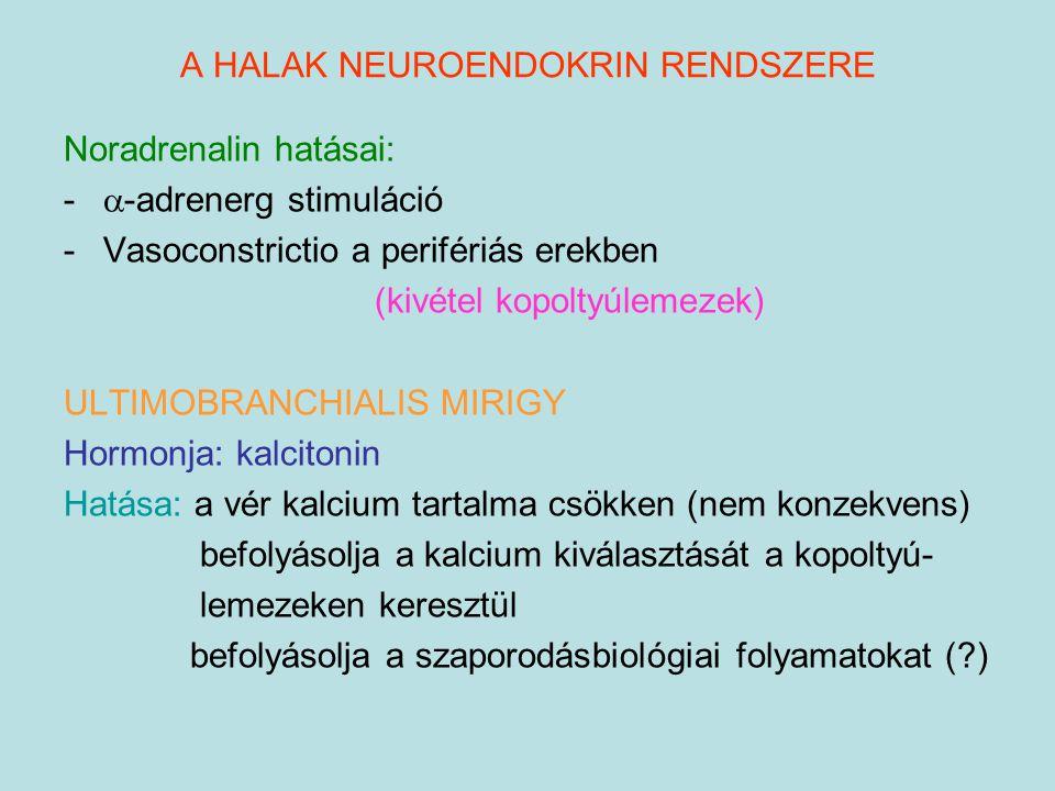 A HALAK NEUROENDOKRIN RENDSZERE