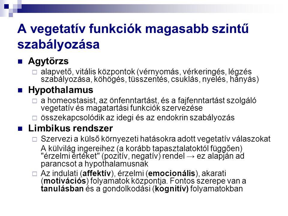 A vegetatív funkciók magasabb szintű szabályozása