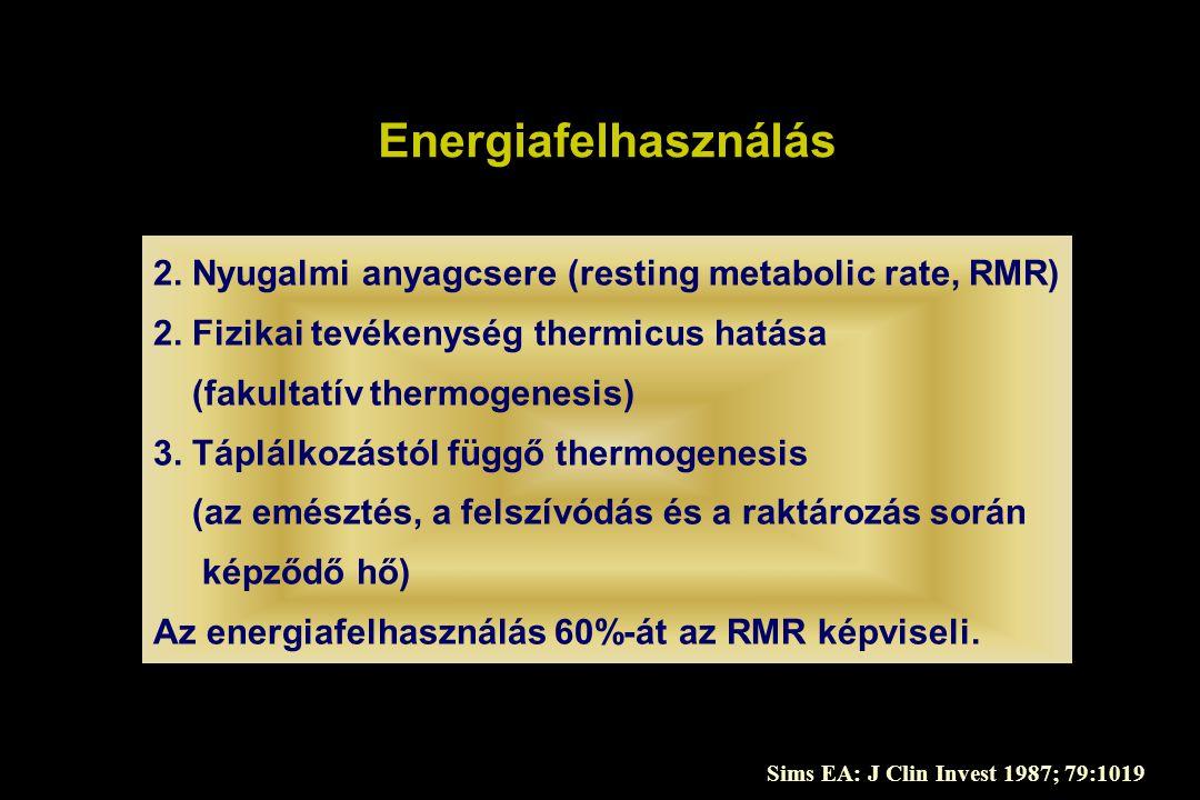 Energiafelhasználás 2. Nyugalmi anyagcsere (resting metabolic rate, RMR) 2. Fizikai tevékenység thermicus hatása.