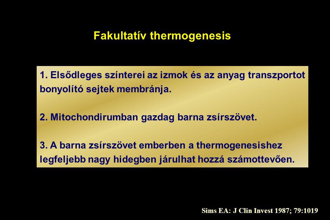 Fakultatív thermogenesis